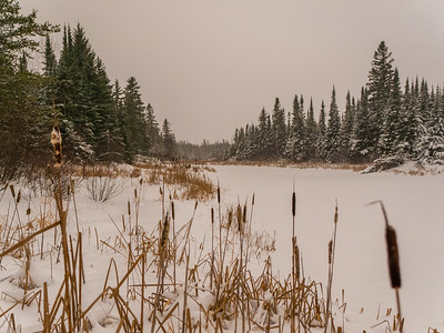 20171225-Christmas_Timmins-507of507-HDR