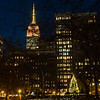 NYC Christmas - Madison Square Park