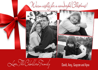 Christmas Card Designs 2009