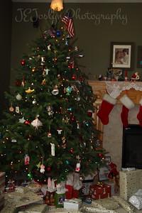 Christmas fun at Matt's   2010