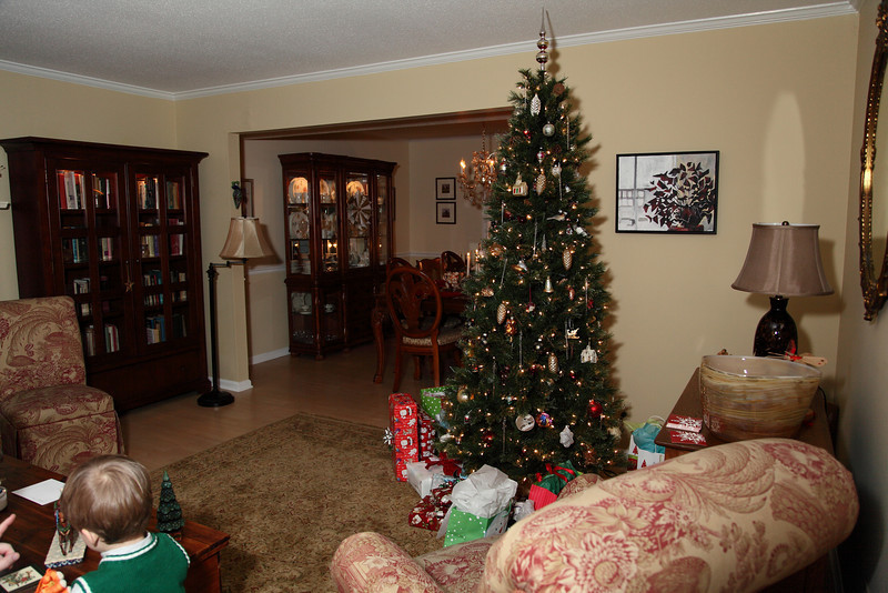 Carol living room at Christmas,you should have seen it while the kids were opening their presents.