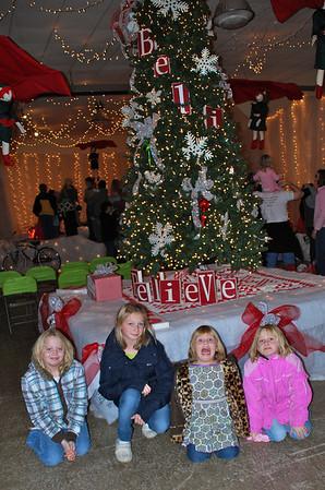 Christmas Festival of Trees Spring Grove November 2009