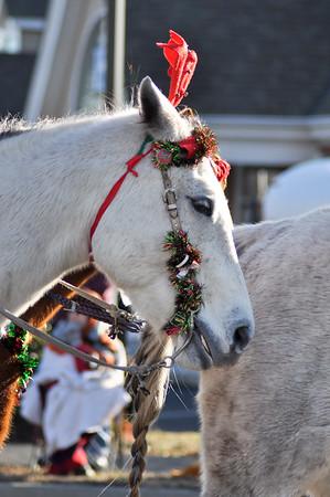 Christmas Parade December 2013