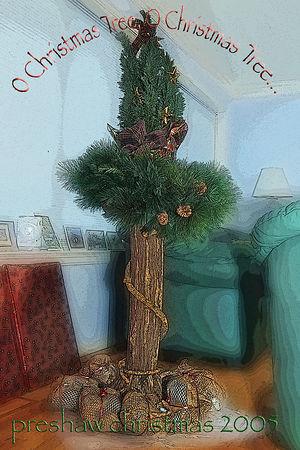 Christmas Pix 2005
