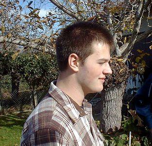 Gavin Tree