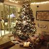 The tree waits for Santa's presents