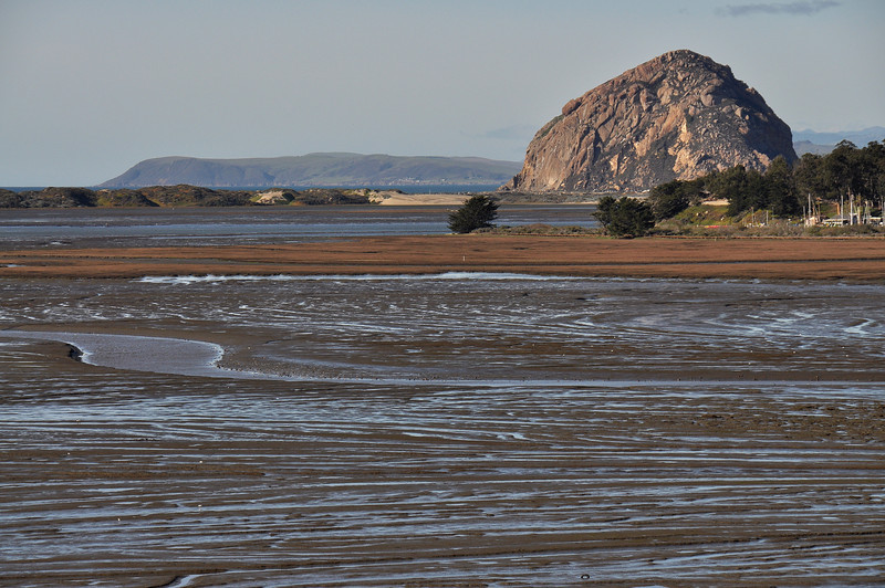 View of Morro Rock from the Elfin Forest Preserve at low tide