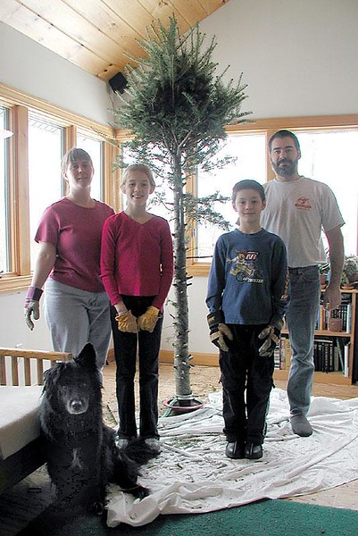 Taking down the tree on New Year's Day