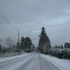 [12/19] Driving into Gresham.