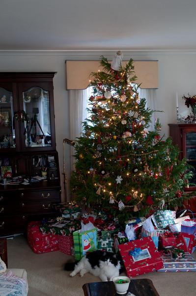 Christmas 2008 --26