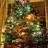 <I>Huston the the tree is up!</I>