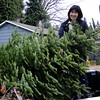 Picking up the Christmas tree on a chilly 25F afternoon.