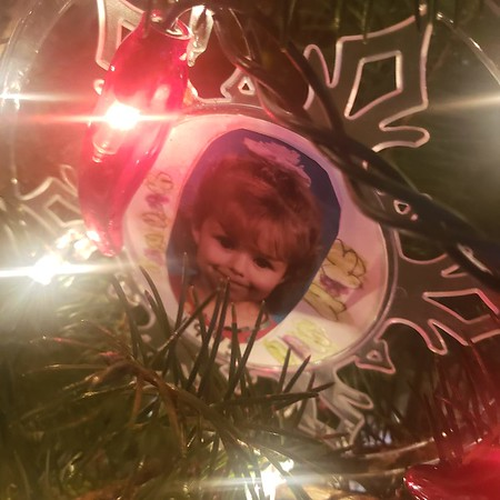 Still on the tree every year!