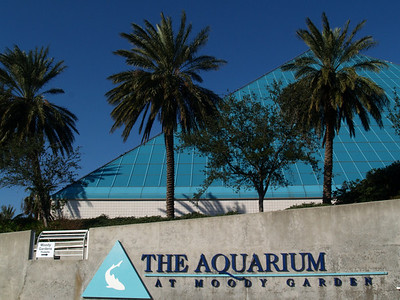 Largest pyramid building at the Moody Gardens aquarium