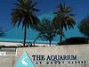 pyramid building at the Moody Gardens aquarium