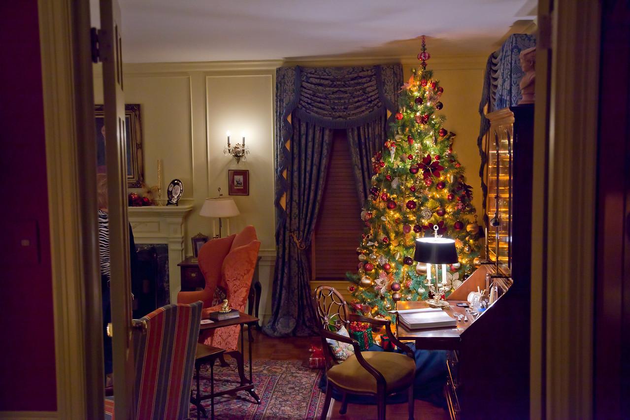 Christmas_2010-8694