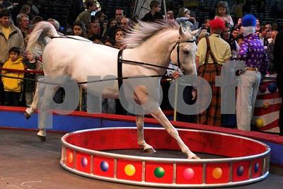 Circusl084
