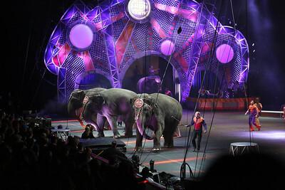 Circus_24