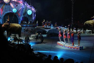 Circus_31