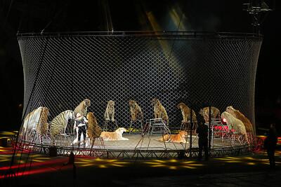 Circus_22
