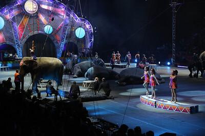 Circus_30