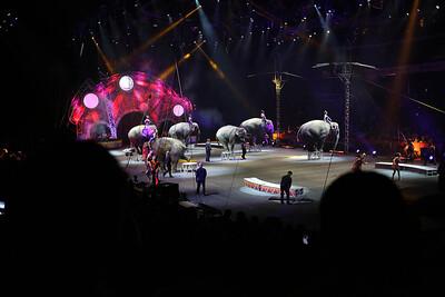 Circus_35