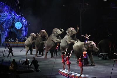 Circus_28