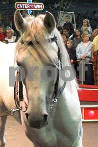 Circusl080