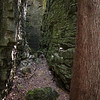 The Bruce Trail takes you this way.<br /> It was 20 degrees cooler going between the rock walls.