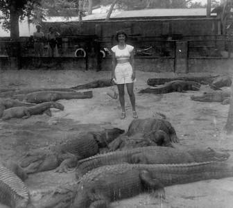 1949 Alligator pit and Clarita