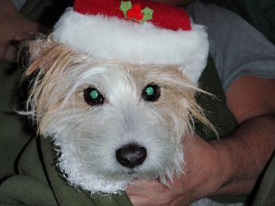 Cobb Christmas 2009