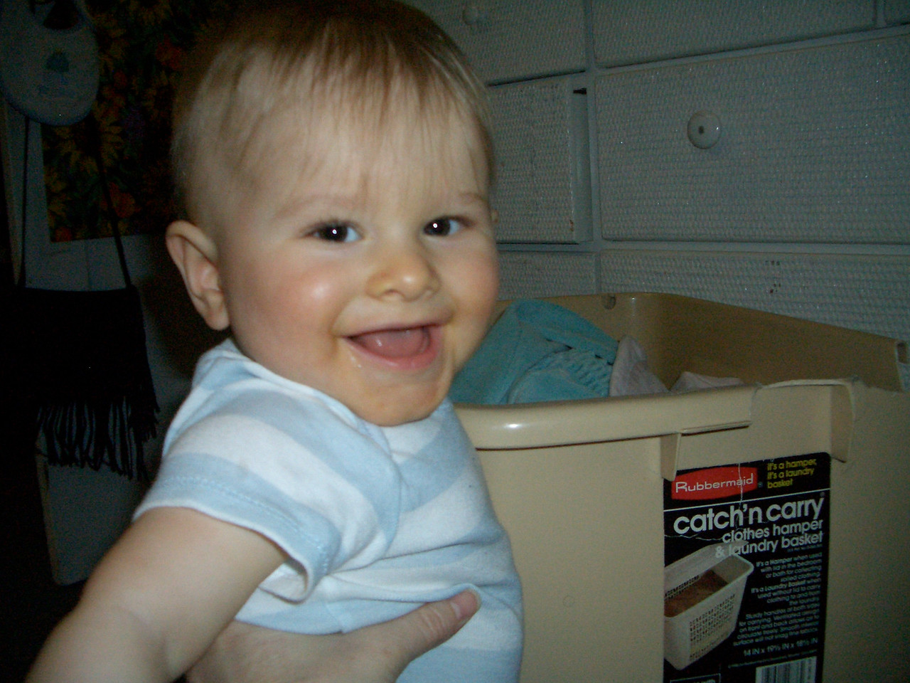 Cody walking around the laundry basket. 1/9