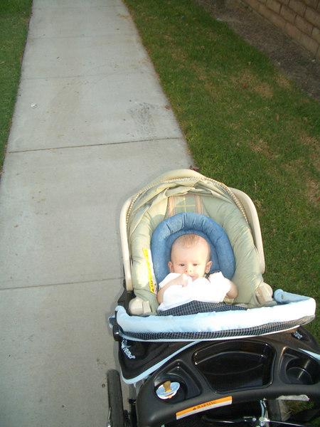 7/18 Cody enjoying his walk