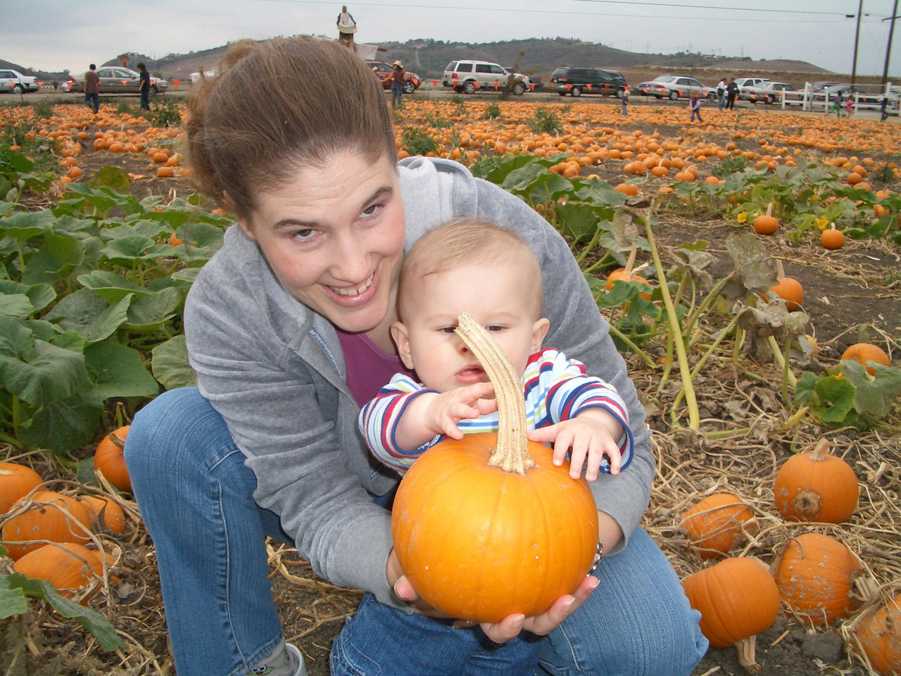 Here is our small pumkin that we picked. 10/15
