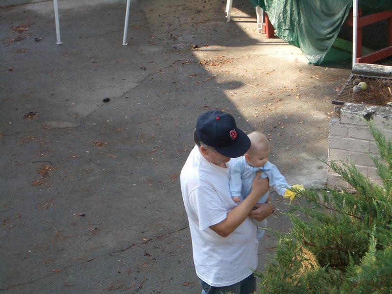 Cody and grandpa pick rose petals. 10/14