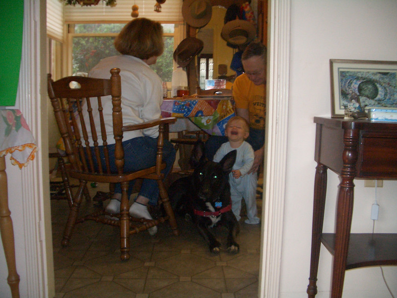 When Nate and Marina went to New York Aphytis stayed with us. Cody loves the dog. 4/7