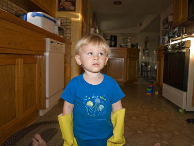 9-17 - The Dish Washer Cody found the dish gloves and is ready to get to work. He looks like he is telling mom, can we get to work now?