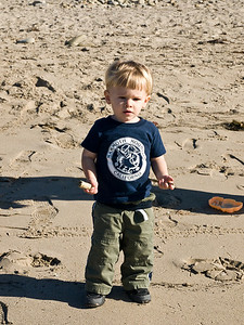 Collecting sticks is one of the best things about the beach.