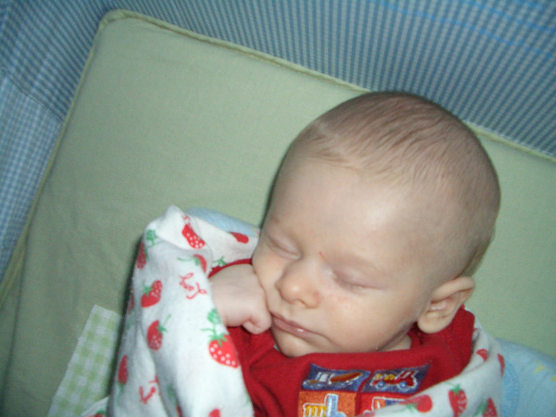 Cody sleeping