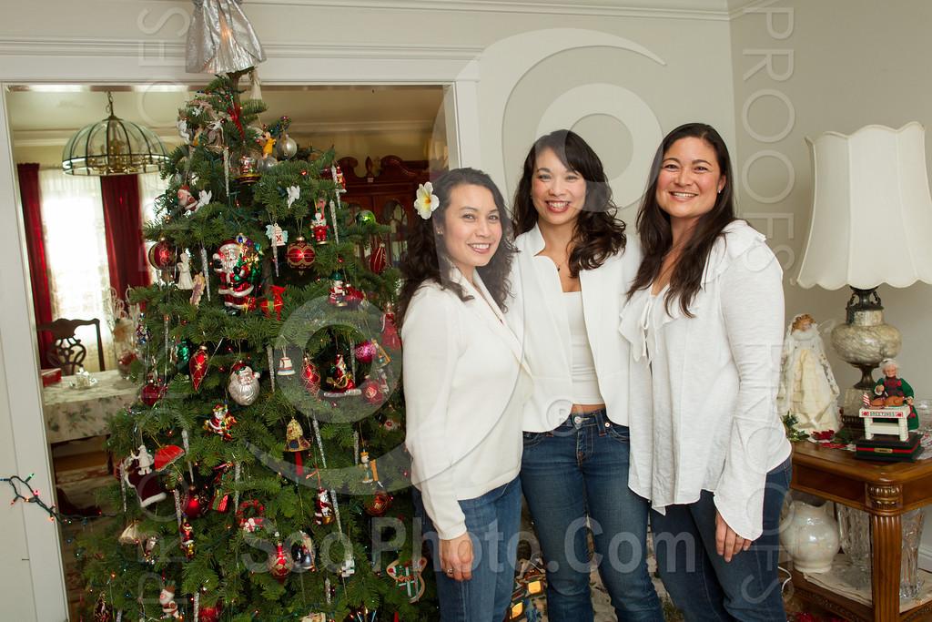2012-12-27-maria-coggiola-family-4616