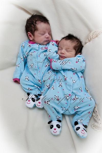 Twins001