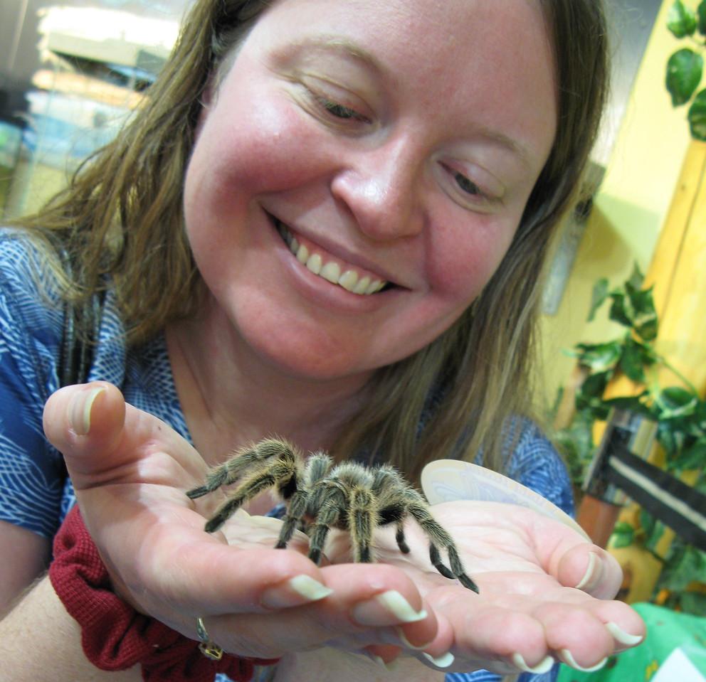 The tarantula's name is Rosie.