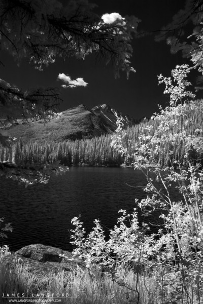 This is an infrared picture from Sprague Lake.