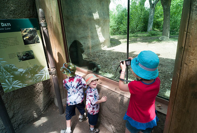 Denver Zoo.