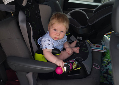 Titus exploring Evalyn's seat during a stop.