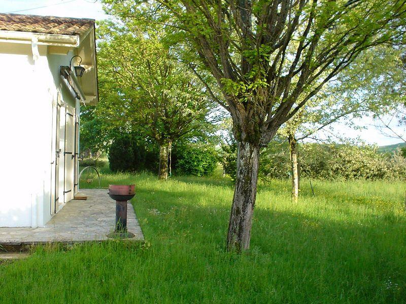 Backyard, towards rear
