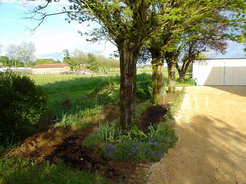 Driveway and flower border