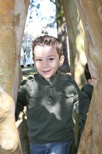IMG_4036 Lucas tree