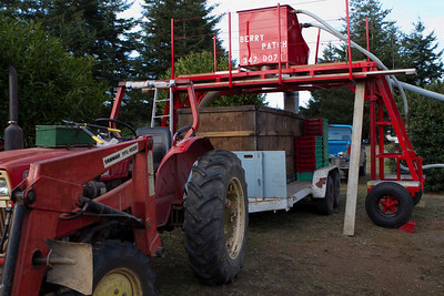 Day 1:  The tractor pulls new containers into place to catch the berries