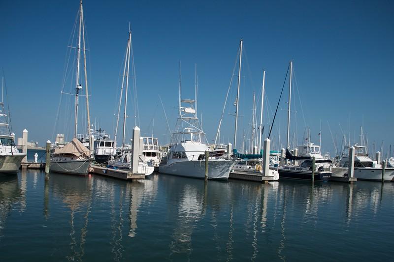 Florida2011_023.jpg